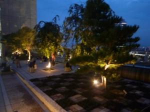 夜の和らぎの庭